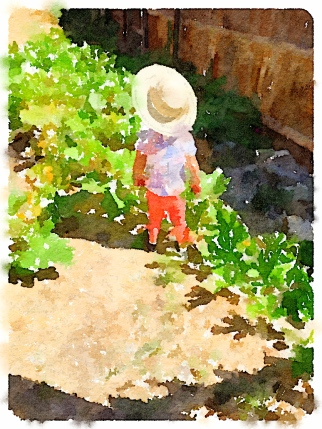 After Waterlogue